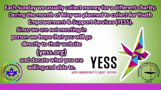 Visit yess.org